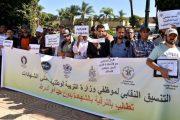 إضراب وطني لموظفي وزارة التربية الوطنية حاملي الشهادات