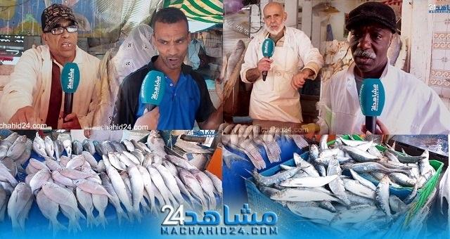 بالفيديو.. مهنيو السمك: