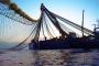طانطان.. فاعلون اقتصاديون يطلعون على فرص الاستثمار بقطاع الصيد