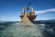 الرباط.. انعقاد أول لجنة مشتركة حول بروتوكول الصيد البحري الجديد