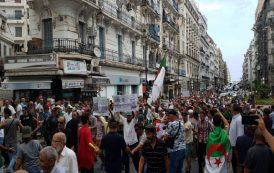 الجزائر.. إدانة ناشطة في الحراك بـ18 شهرا حبسا نافذا