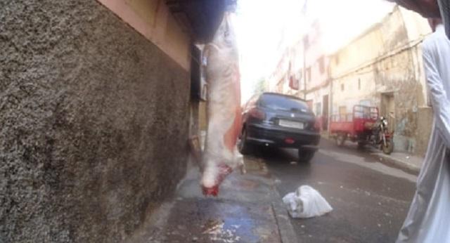 بالصور.. مواطنون ينحرون الأضاحي في الشارع العام