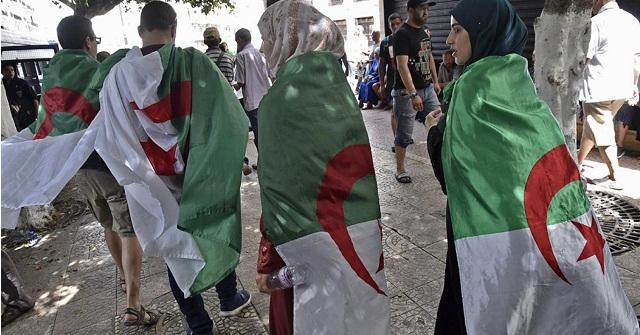 الحراك الشعبي الجزائري يدخل البرلمان الأوروبي