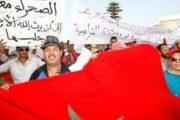 مرصد دولي.. الجزائر تذكي النزاع حول الصحراء
