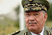 مواجهات أمهريز تورط القايد صالح وجنرالات الجزائر في تجارة قيادة البوليساريو للمخدرات