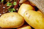 لاحتوائها على مبيدات ضارة.. إتلاف أطنان من البطاطس وتوقيف مروجيها