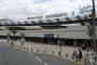 سلطات مطار محمد الخامس تحبط محاولة تهريب 26 صقرا حيا