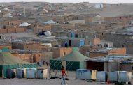 ناشط صحراوي.. كورونا تعري قيادة