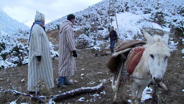 موجة البرد تستنفر سلطات إقليم الحوز