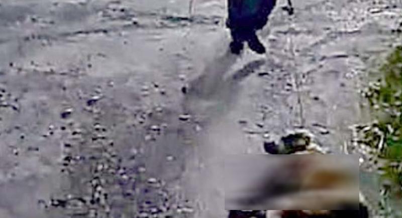 بالصور.. صياد يطلق النار على كلبته ويجرها بحبل من عنقها في إسبانيا