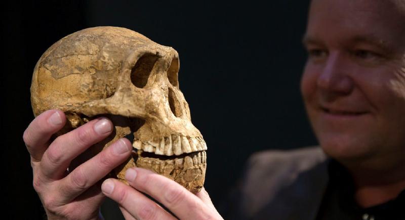 علماء يحددون مكان ظهور أول كائن بشري في التاريخ