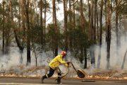 الوقاية المدينة تسيطر على حريق غابة غيغاية بالحوز