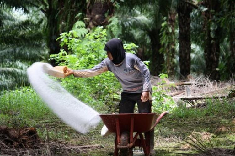 حكومة العثماني تصادق على مشروع قانون لحماية صناعة المنتجات النباتية.. وعقوبات تنتظر المخالفين