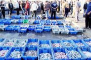الصين مهتمة بتعزيز تعاونها مع المغرب في قطاعي الفلاحة والصيد البحري
