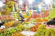 فدرالية: عملية تزويد السوق الوطني بكل أنواع الفواكه تمر في ظروف عادية