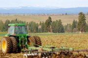 مديرية الفلاحة بالرباط: الأمطار الأخيرة أثرت إيجابا على زراعات عديدة