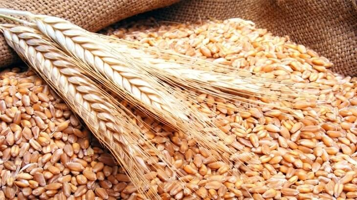 واردات المغرب من الحبوب ترتفع بـ38 بالمائة