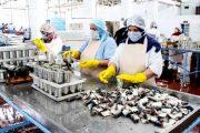 كورونا.. إصدار قرارات بإغلاق 514 وحدة صناعية وتجارية بـ34 عمالة وإقليم