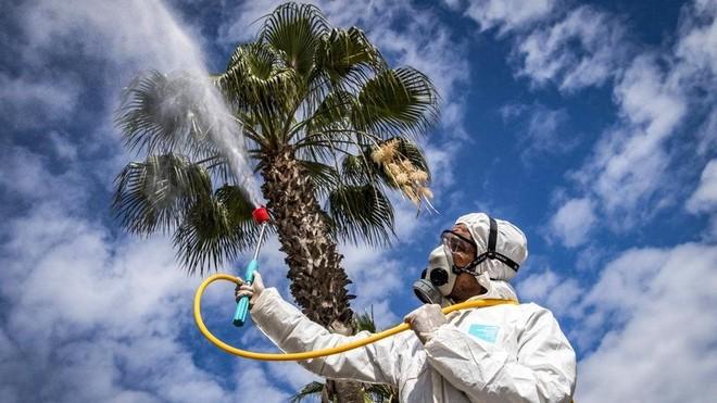 منظمة الصحة: ظهور دليل على احتمال انتشار كورونا عبر الهواء
