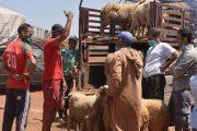 قرار منع التنقل يصعب على المواطنين الحصول على أضحية العيد