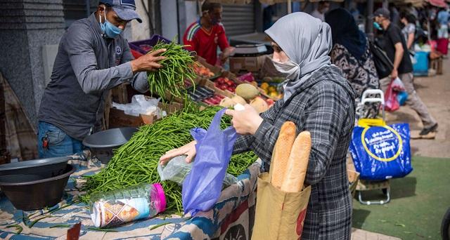 مندوبية التخطيط ترصد تأثير كورونا على الأسر المغربية