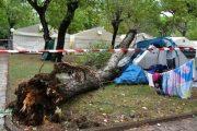 اثر سقوط شجرة.. وفاة طفلتين مغربيتين بإيطاليا يحرك مشاعر التعاطف.. ورئيس الوزراء يتفاعل