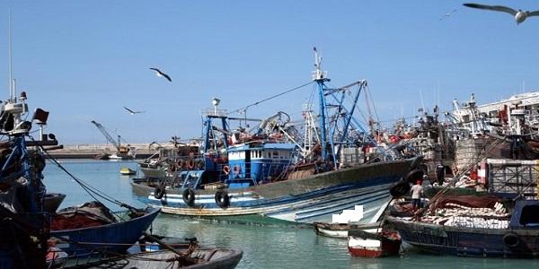 لحل مشاكلهم.. مهنيو الصيد الساحلي يطلقون سلسلة اجتماعات بالأحزاب السياسية