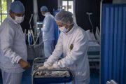 كورونا.. 180 حالة حرجة بمستشفيات المملكة وجهة البيضاء تتصدر قائمة الوفيات