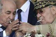 سعار الجزائر.. تبون يمهل المسؤولين 10 أيام لإنهاء العقود مع شركات مغربية