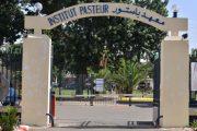 معهد باستور المغرب يؤكد استمرارية إجراء تحاليل كورونا بتقنية PCR