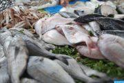 ارتفاع صادرات المنتوجات البحرية المغربية بنسبة 7 بالمائة رغم أزمة ''كورونا''