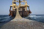 الحكومة توافق على اتفاق التعاون الموقع بين المغرب وروسيا في الصيد البحري