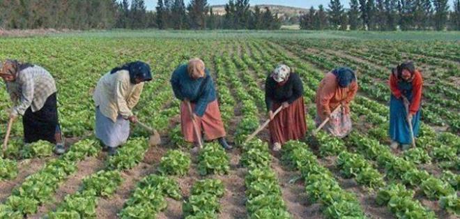 هيئة نقابية تطالب حكومة العثماني بتحسين وضعية النساء العاملات