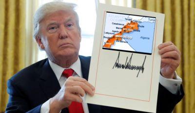 القرار الأميركي يخرج سياسي جزائري عن صوابه ويدفعه للتطاول على المغرب