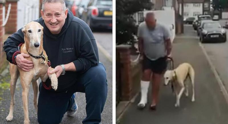رجل ينفق أكثر من 400 دولار على كلبه المريض ليكتشف أنه يقلد مشيته