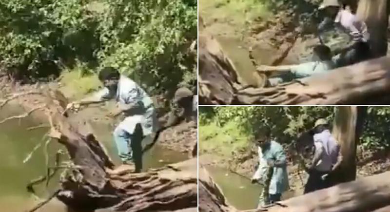 هندي ينجو بأعجوبة من لدغة كوبرا قاتلة حاول إمساكها (فيديو)
