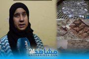 بالفيديو.. سكان منازل آيلة للسقوط بالحي المحمدي يناشدون السلطات لإيجاد حل لمعاناتهم