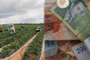 هيئة الرساميل المغربية تتوقع انتعاش الاقتصادي الوطني في السنة الحالية