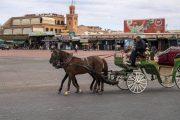 تمديد استفادة العاملين في القطاع السياحي من