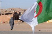الباحث أعماي لـ''مشاهد24'': منظمات مأجورة تفتري على المغرب وتغض الطرف عن انتهاكات الجزائر
