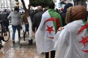 الإعلامي بنشريف يكتب: النظام الجزائري فقد بوصلته.. والمغرب منشغل بالبناء