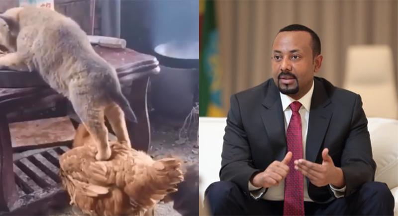 فيديو غريب لرئيس وزراء إثيوبيا على تويتر يخلق تساؤلات