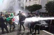 """منظمة غير حكومية.. الجزائر تمر بـ""""مرحلة مظلمة وخطيرة"""""""