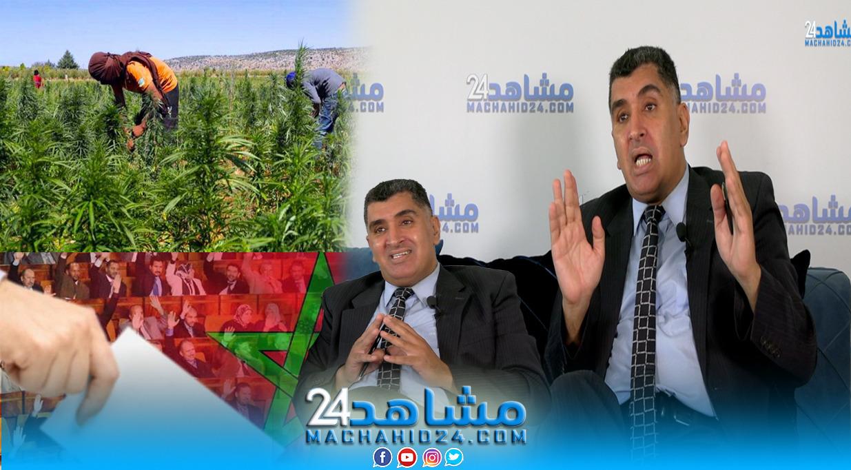 بالفيديو.. محلل: القاسم الانتخابي كشف المستور.. والمغرب سيستفيد من تقنين القنب الهندي
