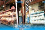 خلال رمضان.. أسعار الدواجن تشهد ارتفاعا في بعض الأسواق