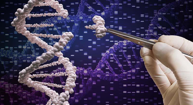 التلاعب بالجينات يقودنا إلى عالم غريب.. هذه معالمه
