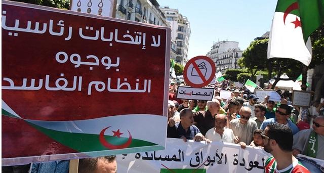 الجزائر.. النتائج الأولية للانتخابات تفجر مفاجأة مدوية وتطرح تساؤلات حول نزاهتها