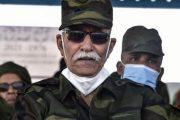 جمعية صحراوية تطالب باعتقال زعيم البوليساريو