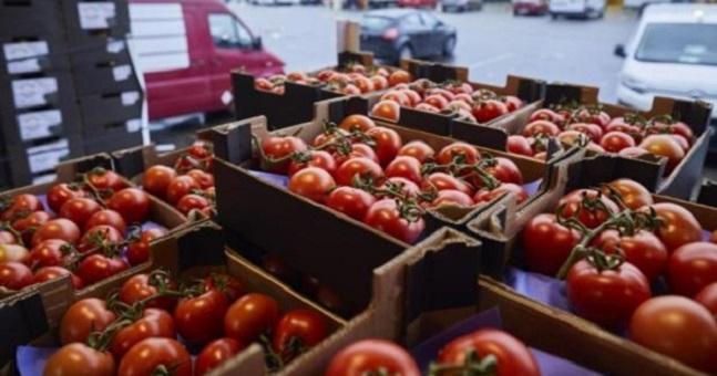 وسط الأزمة الدبلوماسية.. إسبانيا تشن حربا ضد الطماطم المغربية