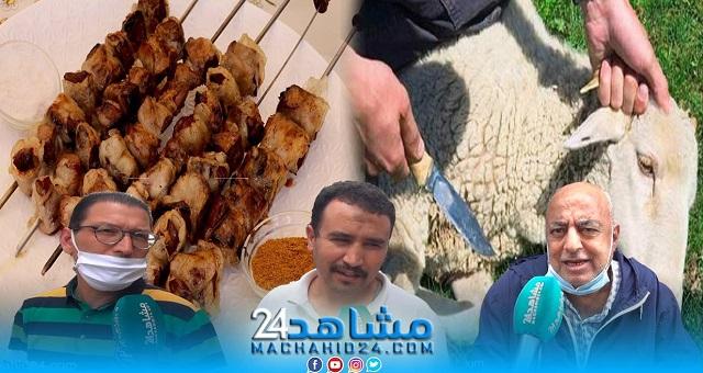 بالفيديو.. عيد الأضحى.. مغاربة: